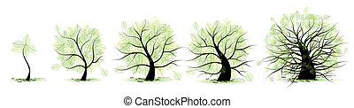 élet, öreg, tree:, életkor, fiatalság, felnőttkor, gyermekkor, előad, kamaszkor