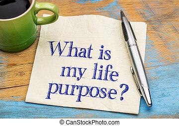 élet, az enyém, purpose?, mi
