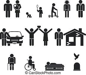 élet, halál, öreg, stage., fiatalság, életkor, születés, felnőttkor, kamaszkor