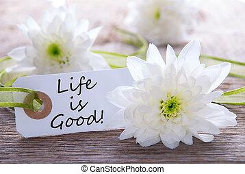 élet, jó, címke