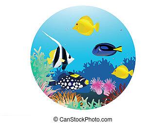 élet, tengeri, karikatúra