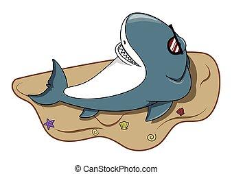 élvez, cápa, tengerpart