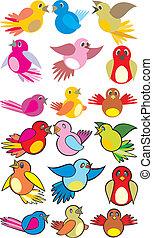 éneklés, madarak