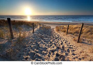 észak, felett, napfény, tenger, út, tengerpart