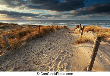 észak, napfény, homok tenger, út, tengerpart