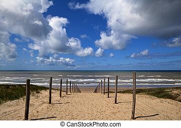 észak, zee, aan, zandvoort, tenger, út, tengerpart
