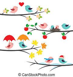 évszaki, elágazik, madarak