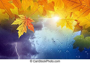 évszaki, fogalom, előre lát, ősz, háttér, bukás, időjárás