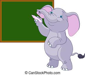 írás, elefánt, tábla