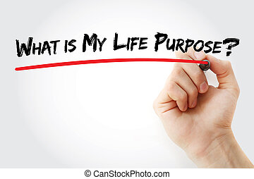 írás, mi, kéz, az enyém, purpose?, élet