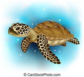 óceán, úszás, tengeri teknős