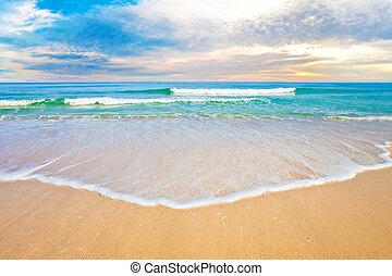 óceán, tropikus, naplemente tengerpart, vagy, napkelte