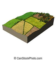 ökoszisztéma, formál, farmland, 3