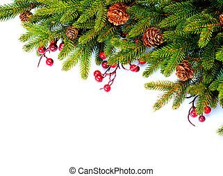 örökzöld fa, elszigetelt, fehér, határ, karácsony, design.