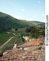 öreg, nyaraló, szőlőskert, tető, toszkánai, berkek, közé, olajbogyó