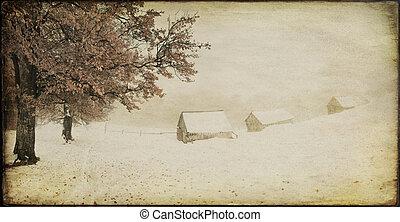 öreg, tél parkosít, tanya, szüret