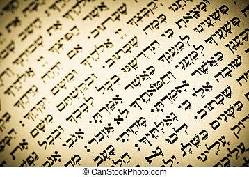 öreg, zsidó, szöveg, könyörgés beír, héber