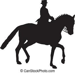összegyűjtött, ló, árnykép, idomítás, üget