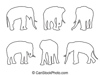 út, fehér, állhatatos, háttér, elefánt