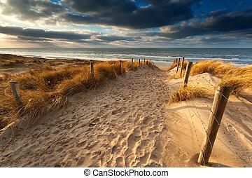 út, homok tengerpart, északi-tenger