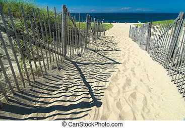 út, homok tengerpart, rovat
