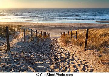 út, napnyugta, tenger