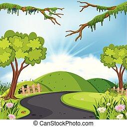 út, táj, természet