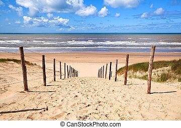 út, tengerpart, észak, homokos, tenger