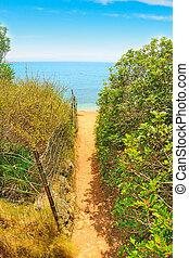 út, tengerpart, alghero