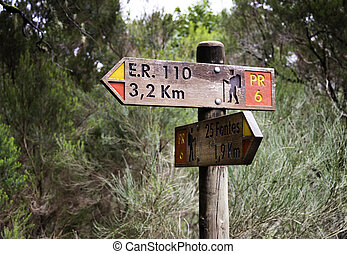 útvonal, irány, gyalogló, megjelöl