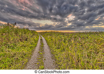 útvonal, mocsaras terület, át, természetvédelmi terület