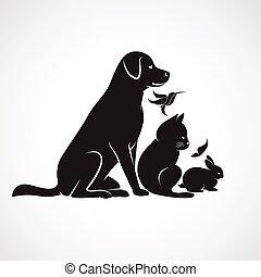 üregi nyúl, madár, lepke, macska, háttér, -, elszigetelt, vektor, kisállat, csoport, kutya, fehér