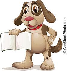 üres, birtok, kutya, könyv