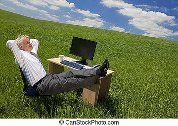 üzletember, zöld, hivatal, bágyasztó