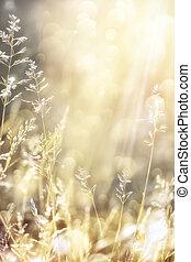 ősz, absztrahál rajzóra, háttér, természet
