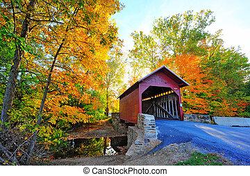 ősz, befedett, maryland, bridzs