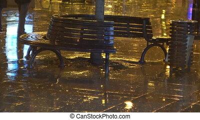 ősz, esős, kutyát kiállít, éjszaka