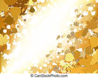 ősz, fény, háttér., eps, 8
