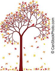 ősz, fa, színes