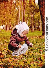 ősz, gyalogló, liget, gyermek