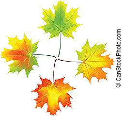 ősz, kereszt