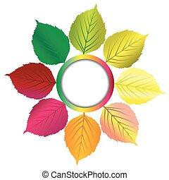 ősz, keret, zöld, háttér, kerek