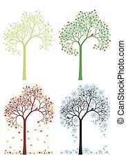 ősz, tél, fa, eredet, nyár