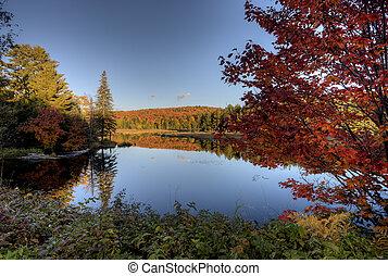 ősz, tó