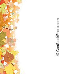 ősz, template., háttér