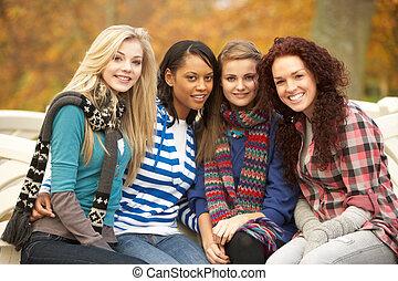 ősz, tizenéves, csoport, ülés, lány, pad, négy