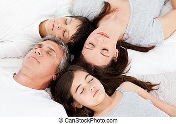 -eik, ágy, család, fekvő