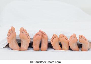 -eik, ágy, lábak, kiállítás, család