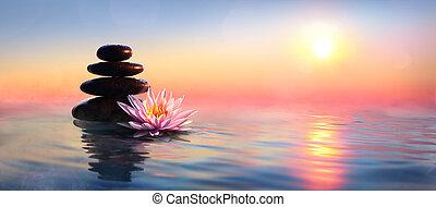 -, tó, waterlily, napnyugta, zen, ásványvízforrás, csiszol, fogalom