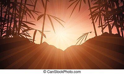 1906, napnyugta, bambusz, ég, ellen